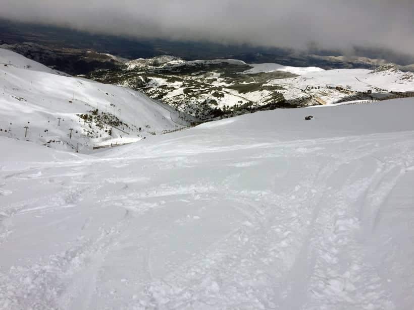 Nieve Polvo el Día D de un año Bisiesto